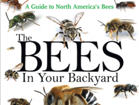 Bees In Your Backyard Olivia Carril Coming To Ohio In August