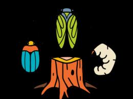 ESA NCB 2021 Meeting Logo